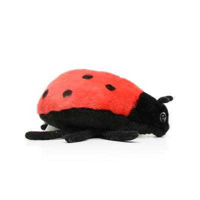 6547번 무당벌레 Lady Bug Red/17cm.L