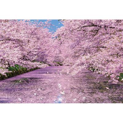 1000피스 직소퍼즐 - 히로사키 공원의 벚꽃