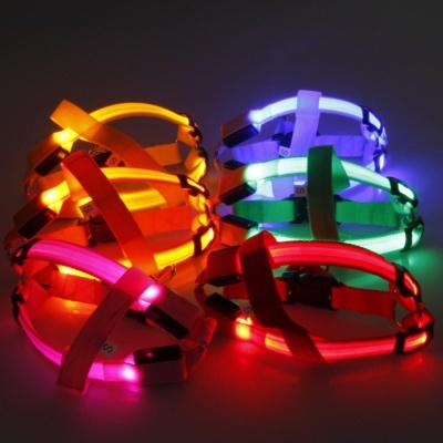 1+1 LED 하네스 야간산책 강아지 가슴줄 몸줄