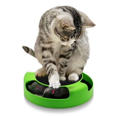 캐치 마우스 토이 Motion cat toy