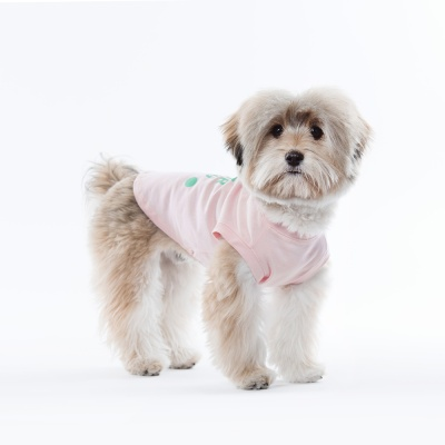 [스니프 X 오보이] 캠페인 베이직 나시 (핑크)