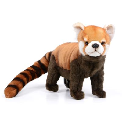 6309번 레드판다 Red Panda Stn/67cm.L