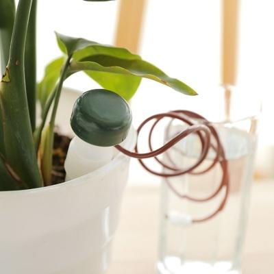 화분 물공급기 2P 자동급수 식물 대형 소형 다육이 꽃