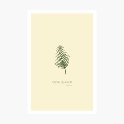 트로피칼 포스트카드 엽서 - Tropical leaf