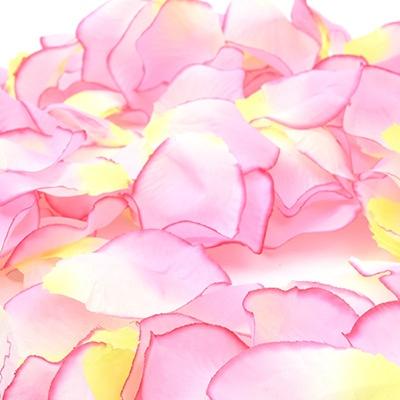 플라워샤워 이벤트꽃잎 (라벤더)