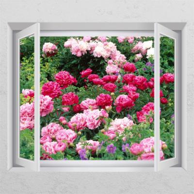 ta640-풍수붉은모란꽃밭_창문그림액자