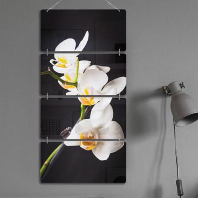 nl507-멀티아크릴액자_아름다운난초(4단)