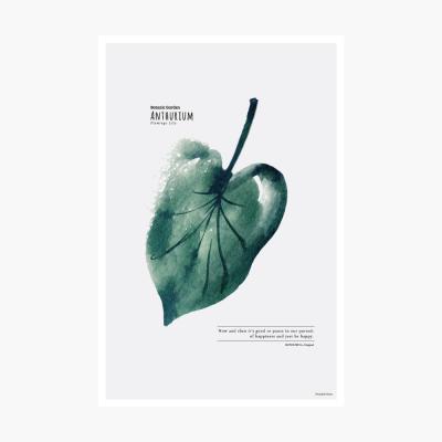보타닉가든 포스트카드 엽서 - Anthurium