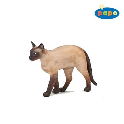 [papo] 시암 고양이