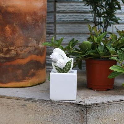 입체 은방울꽃 3종 자수소품 만들기 DIY KIT
