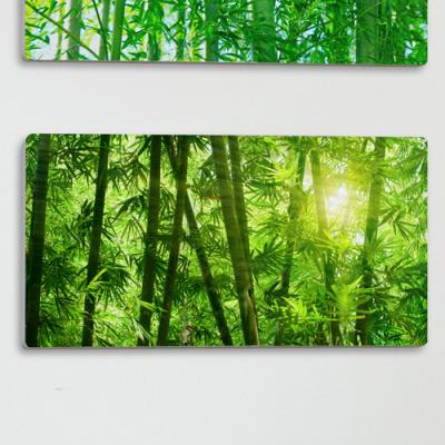 af150-폼아크릴액자38CmX18Cm_울창한대나무숲