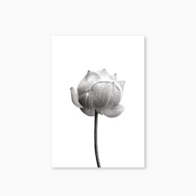 [Monotone Series] Type B - Flower-1 유선노트