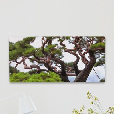 af464-폼아크릴액자38CmX18Cm_굳건한풍수소나무