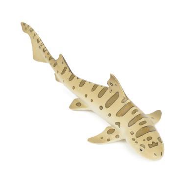 274929 레오파드상어 Leopard Shark