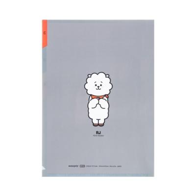 [BT21] 3포켓pp폴더 / 알제이(RJ)