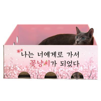 [노리노리캣] 카펫 스크래쳐 박스 (벚꽃에디션)