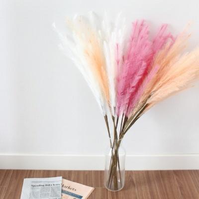 핑크뮬리 조화 팜파스 핑크 꽃 갈대 3color 플라워