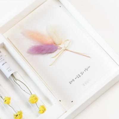 [기획한정] 티스틱&꽃편지 선물세트(티스틱10pc)