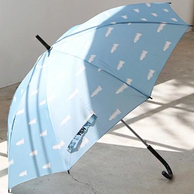 [1+1] 더스프링홈 자동 장우산