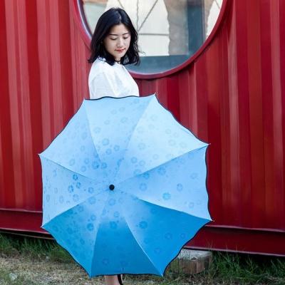 벚꽃우산(블루) 비 맞으면 벚꽃이 피어나는 3단우산