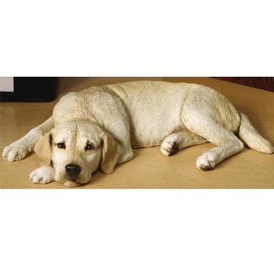 Labrador Retriever(래브라도 리트리버)_OS492