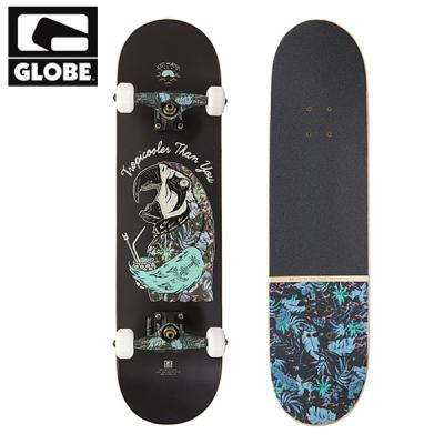 [GLOBE] EST AT SEA PARROT G2 COMPLETE 8.0 (풀사이즈)