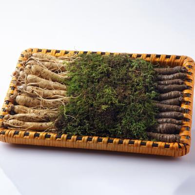 금산 울몸애 수삼더덕 선물세트 大 2kg(수삼+더덕)