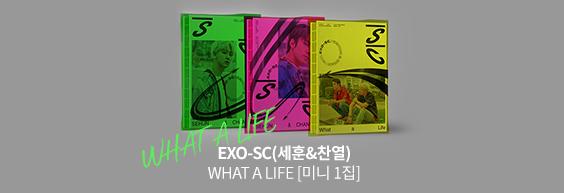 EXO-SC(세훈&찬열) - WHAT A LIFE [미니 1집]