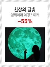 환상의 달빛