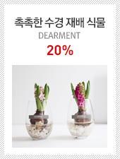 촉촉한 수경 재배 식물