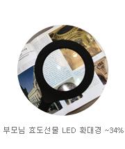 LED 확대경
