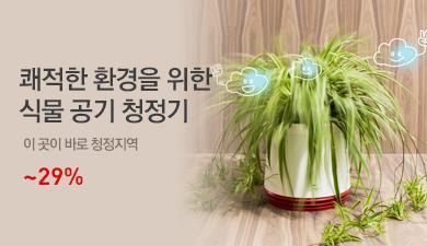 식물 공기 청정기
