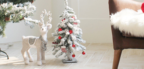 프롬트웬티 크리스마스