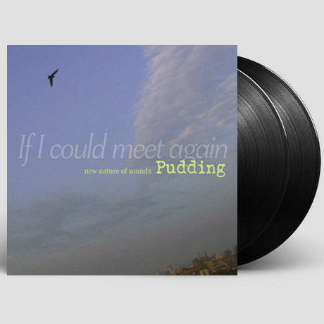 IF I COULD MEET AGAIN [180G LP]