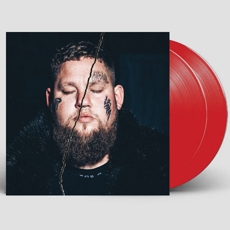 LIFE BY MISADVENTURE [RED LP] [한정반]