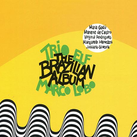 THE BRAZILIAN ALBUM