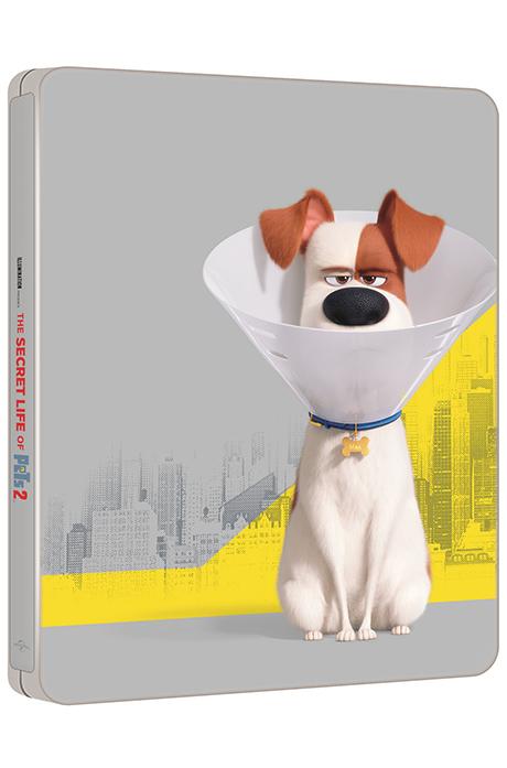 마이펫의 이중생활 2 [3D+2D] [스틸북 한정판] [THE SECRET LIFE OF PETS 2]