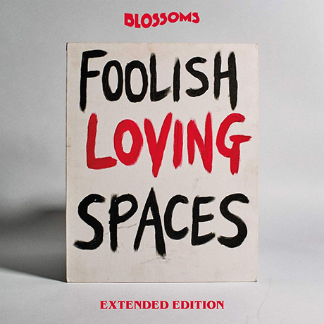 FOOLISH LOVING SPACES [EXTENDED]