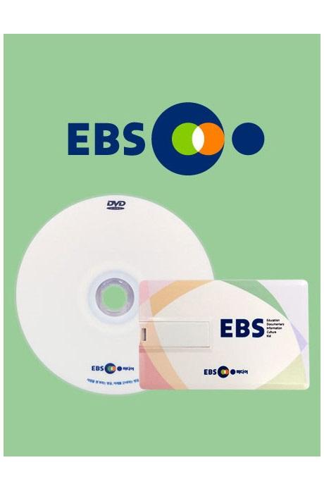 EBS 어린이 성교육 2종 시리즈: 최고다! 호기심 딱지 DVD+USB 멀티 플러스 [주문제작상품]