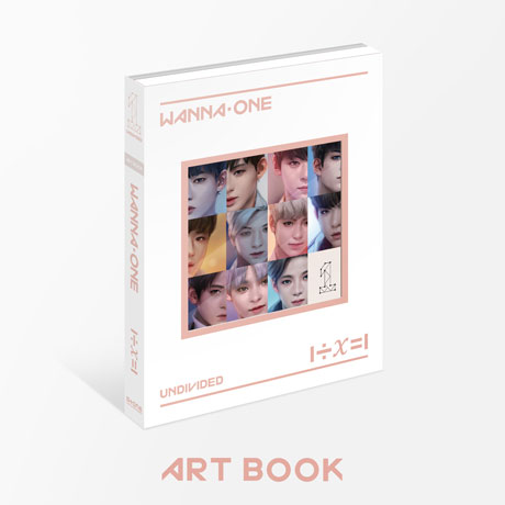 1÷Χ=1 (UNDIVIDED) [ART BOOK] [스페셜]