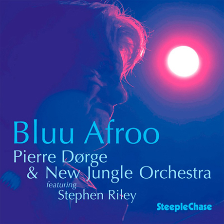 BLUU AFRO: FEATURING STEPHEN RILEY