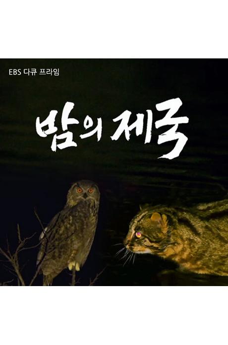 EBS 밤의 제국 [녹화물] [주문제작상품]