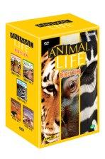 동물의 세계 5종 박스 세트