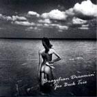 BRAZILIAN DREAMNIN` [200G LP]