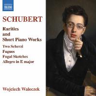 RARITIES AND SHORT PIANO WORKS/ WOJCIECH WALECZEK [슈베르트: 희귀 피아노 작품, 피아노 단편 작품집 - 보이체흐 발레체크]