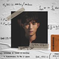 수학적 관념