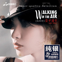 WALKING IN THE AIR [DSD MASTERING] [SILVER ALLOY] [한정반]
