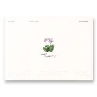 [지관통+포스터]김성규(KIM SUNG KYU) - WON`T FORGET YOU [싱글]*