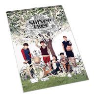 SHINEE(샤이니) - 2013 벽걸이용 캘린더*