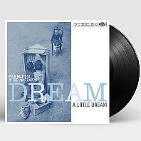DREAM A LITTLE DREAM [180G LP]